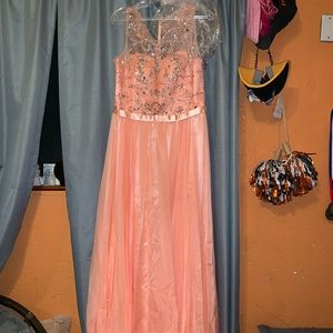 Peach Special Occasion/Prom Dress